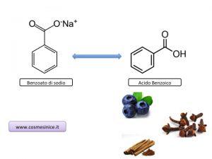 molecole dei conservanti
